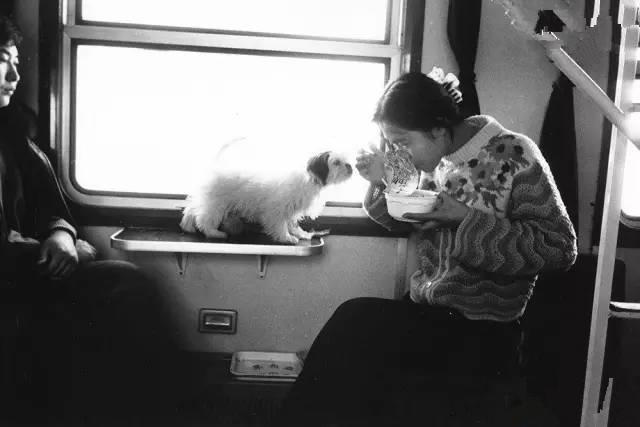 摄影师王福春的系列作品《火车上的中国人》里记录了大量与吃有关的画面。1995年,从齐齐哈尔开往北京的列车上,一名女子吃着泡面,旁边的宠物狗也忍不住凑过去嗅了嗅。正是从八九十年代开始,方便面才在中国逐渐变得流行起来。(图片来自腾讯网、新华网、东方网)