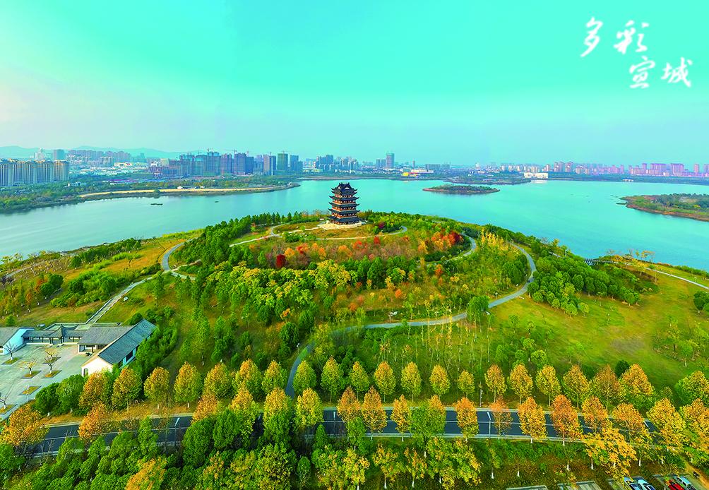 初冬时节,银杏泛黄,枫叶转红,宛陵湖畔的绿色变成淡绿色,继而变成鹅黄色,仿佛一幅美丽的油画。 特约记者 潘华业 摄