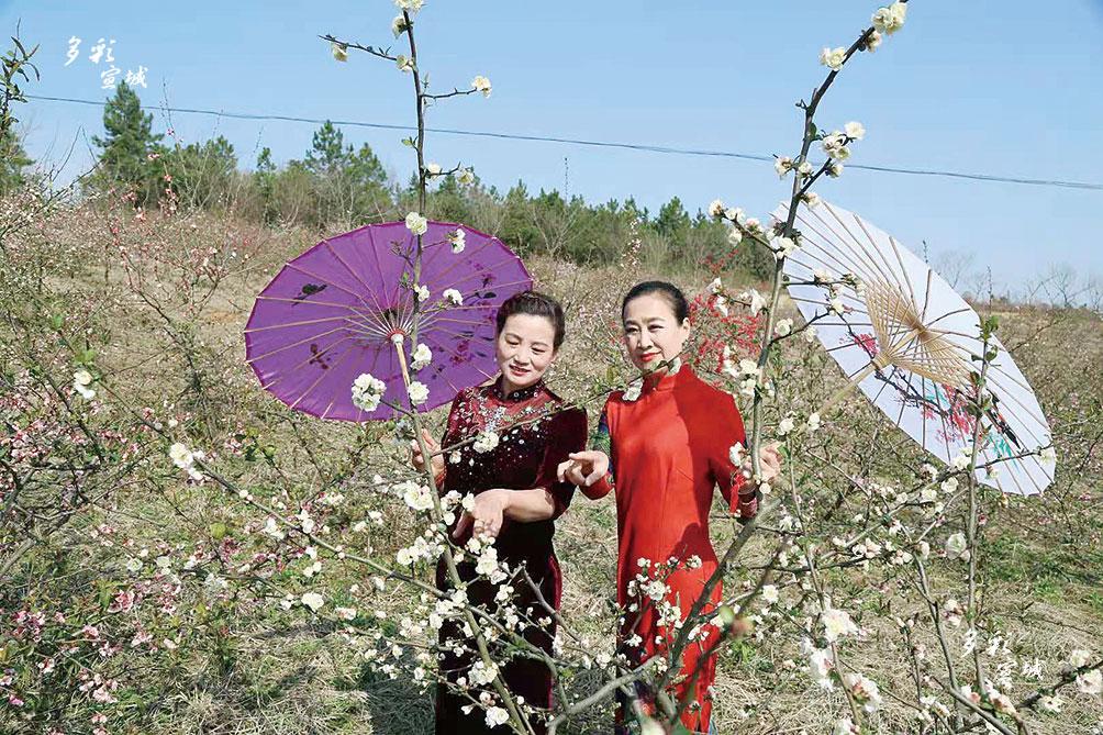 日前,在宣州区新田镇成熟村木瓜园,红色、粉色、黄色、白色的花朵互相映衬,或含苞待放,或盛开怒放,空气中弥漫淡淡清香,吸引了众多市民前来踏青赏花。 特约记者 宋本金 摄
